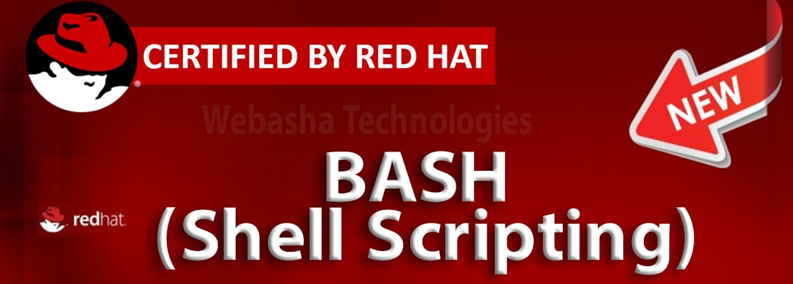 bash training institute in pune