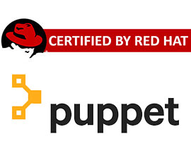 puppet training in pune